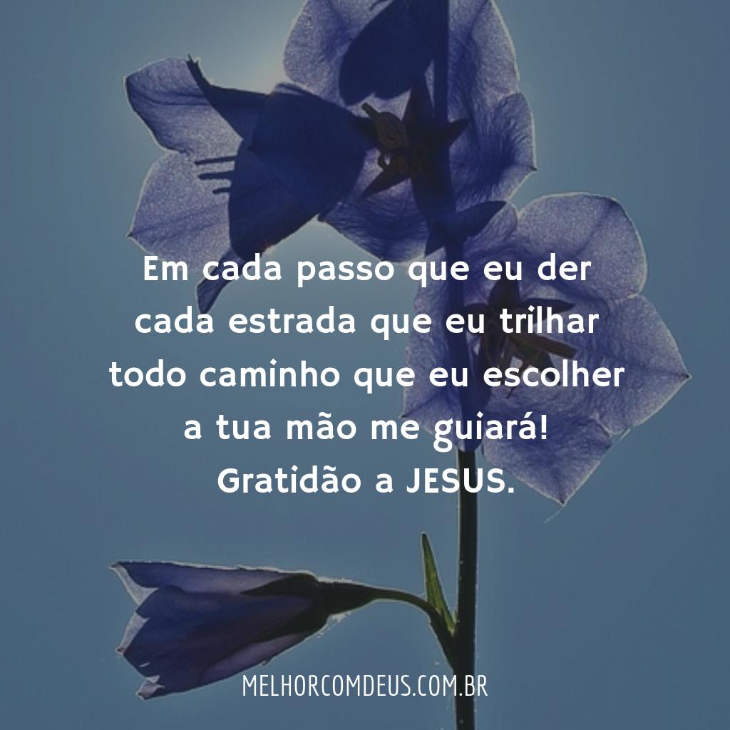 Gratidão a Jesus