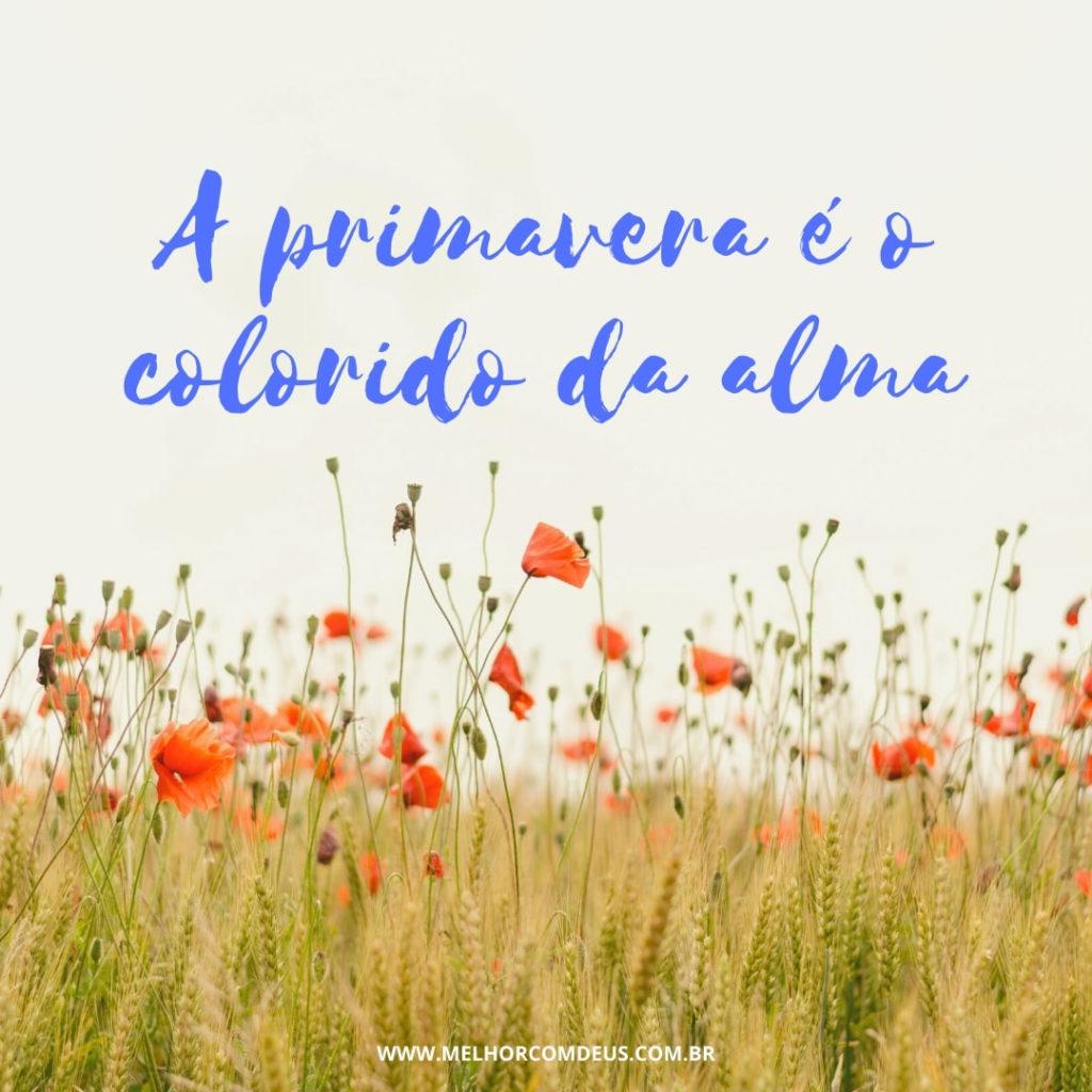 a primavera é o colorido da alma